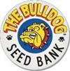 the bulldog seed bank